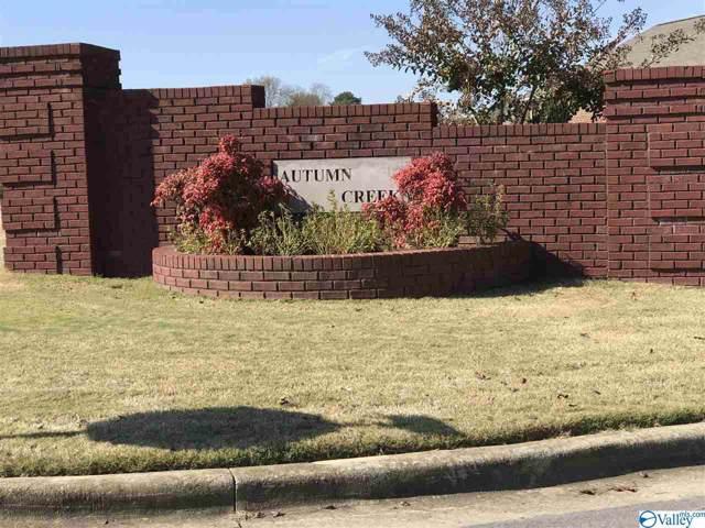 Lot 14 Autumn Creek Drive, Arab, AL 35016 (MLS #1131623) :: The Pugh Group RE/MAX Alliance