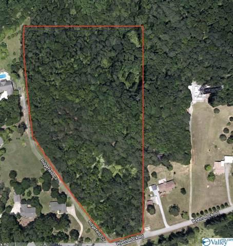 000 Wyeth Rock Rd, Guntersville, AL 35976 (MLS #1131716) :: Amanda Howard Sotheby's International Realty