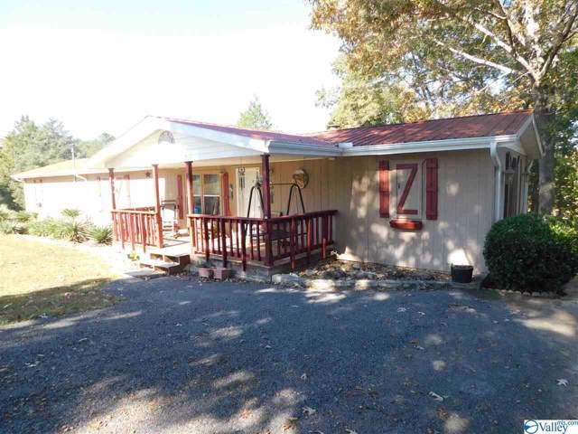 670 County Road 355, Leesburg, AL 35983 (MLS #1131739) :: RE/MAX Distinctive | Lowrey Team