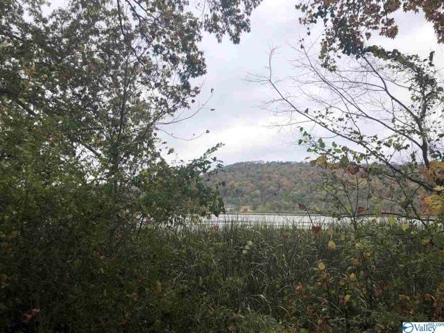 Lot 5 Alabama Highway 179, Guntersville, AL 35976 (MLS #1131895) :: Capstone Realty