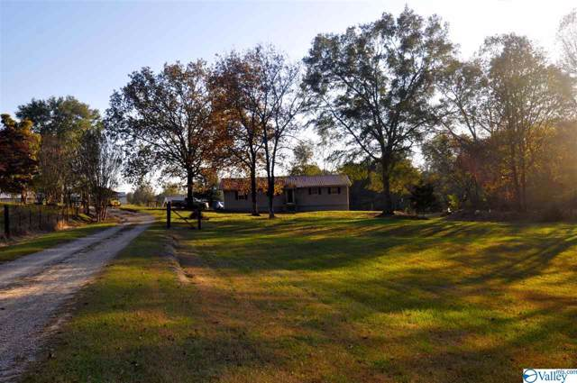 683 County Road 198, Crane Hill, AL 35053 (MLS #1131913) :: Capstone Realty