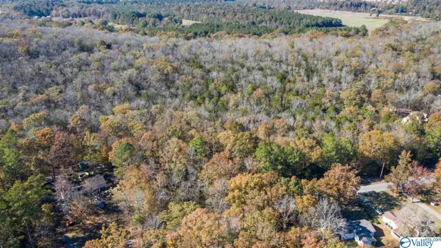 0 Low Gap Road, New Hope, AL 35760 (MLS #1131937) :: RE/MAX Distinctive | Lowrey Team