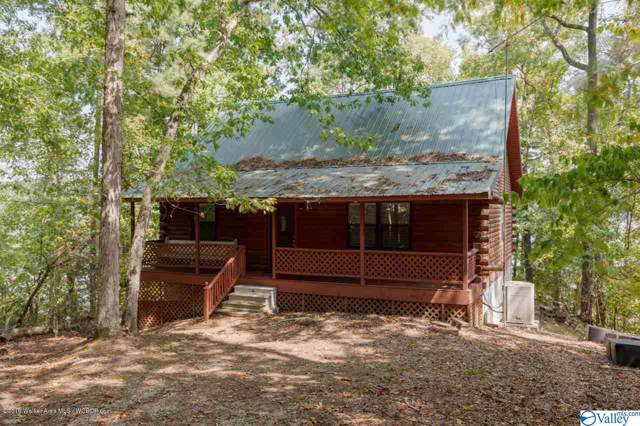 777 County Road 3923, Arley, AL 35541 (MLS #1132065) :: Capstone Realty