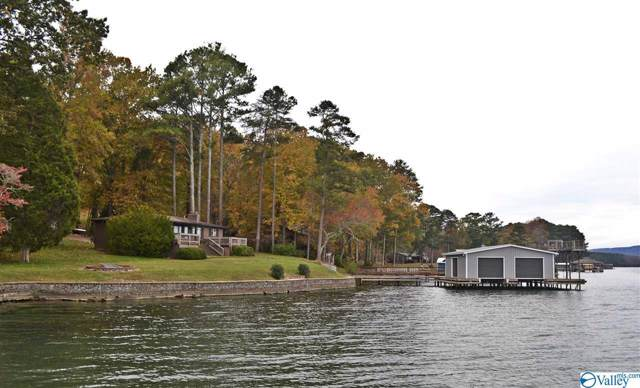1174 Lakeshore Drive, Langston, AL 35755 (MLS #1132125) :: Amanda Howard Sotheby's International Realty