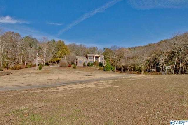 1030 Dug Hill Road, Brownsboro, AL 35741 (MLS #1132265) :: Capstone Realty