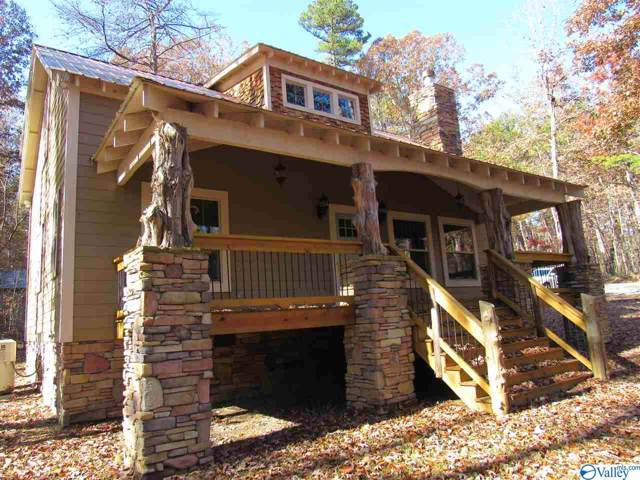 784 County Road 613, Mentone, AL 35984 (MLS #1132320) :: Amanda Howard Sotheby's International Realty