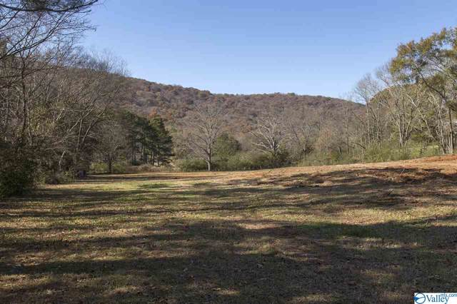 290 Old Big Cove Road, Brownsboro, AL 35741 (MLS #1132325) :: Capstone Realty