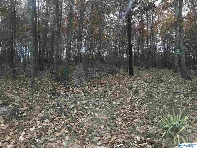 000 County Road 354, Collinsville, AL 35961 (MLS #1132565) :: Weiss Lake Alabama Real Estate