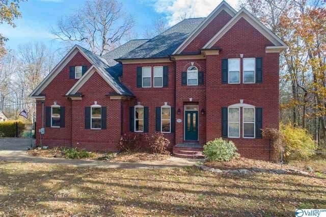 486 Powell Chapel Road, Falkville, AL 35622 (MLS #1132571) :: Capstone Realty