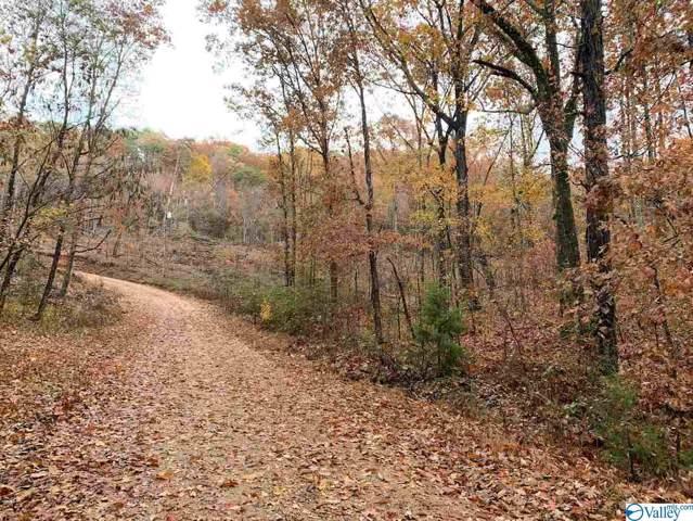 27 Roden Ridge Road, Guntersville, AL 35976 (MLS #1132642) :: Amanda Howard Sotheby's International Realty