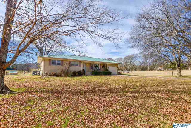 428 Delina Boonshill Road, Petersburg, TN 37144 (MLS #1132656) :: RE/MAX Distinctive | Lowrey Team