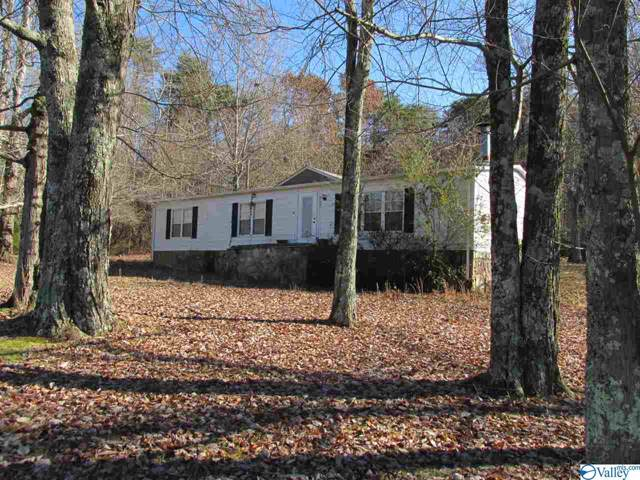 4105 Desoto Parkway, Fort Payne, AL 35967 (MLS #1132766) :: Revolved Realty Madison