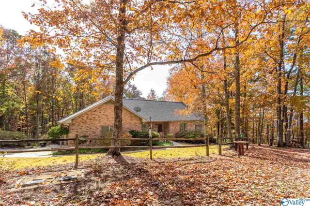4085 County Road 42, Steele, AL 35987 (MLS #1132960) :: Amanda Howard Sotheby's International Realty