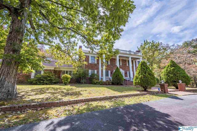 1038 County Road 165, Mentone, AL 35984 (MLS #1132979) :: Amanda Howard Sotheby's International Realty