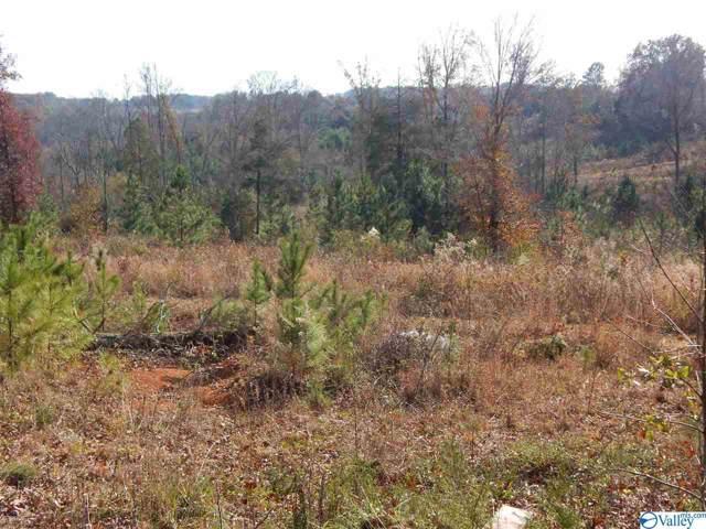 000 Tall Pine Road, Hartselle, AL 35640 (MLS #1132981) :: Capstone Realty