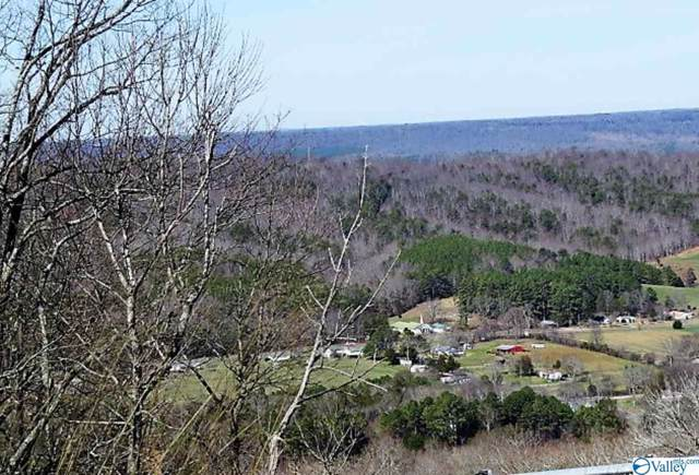 Tract 2 County Road 107, Fort Payne, AL 35967 (MLS #1132983) :: Weiss Lake Alabama Real Estate