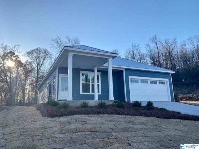 1025 Laurinda Lane, Guntersville, AL 35976 (MLS #1133122) :: Amanda Howard Sotheby's International Realty