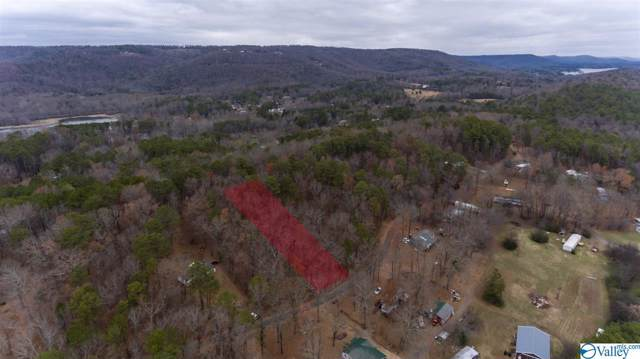 0 Holiday Shores Road, Scottsboro, AL 35769 (MLS #1133147) :: Capstone Realty