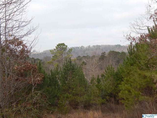 00 Jacobs Lane, Attalla, AL 35954 (MLS #1133270) :: Intero Real Estate Services Huntsville