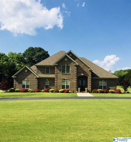 2530 Modaus Road, Decatur, AL 35603 (MLS #1133277) :: Amanda Howard Sotheby's International Realty