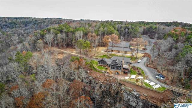 Lot 4 Burns Bluff Loop, Albertville, AL 35951 (MLS #1133302) :: Southern Shade Realty
