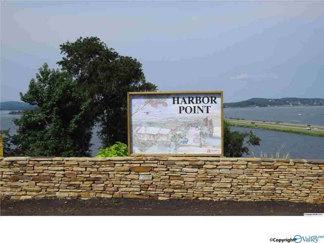 3 Harbor Point Drive, Guntersville, AL 35976 (MLS #1133399) :: The Pugh Group RE/MAX Alliance