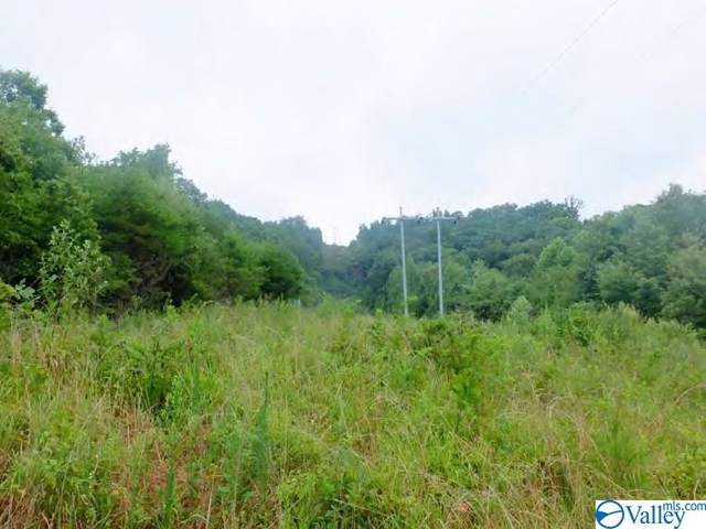 Alabama Highway 68, Collinsville, AL 35961 (MLS #1133513) :: Capstone Realty