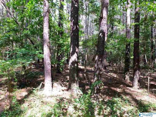 Highway 643, Scottsboro, AL 35769 (MLS #1133515) :: Capstone Realty