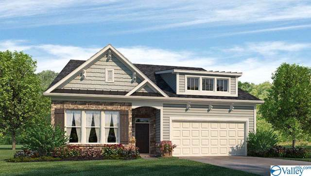 28599 Paseo Road, Madison, AL 35756 (MLS #1133819) :: Weiss Lake Alabama Real Estate