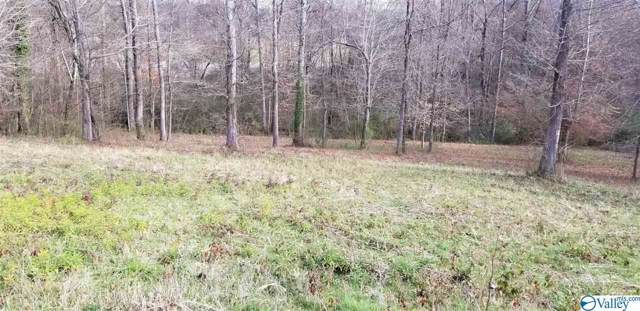 241 York Drive, Rogersville, AL 35652 (MLS #1133863) :: MarMac Real Estate