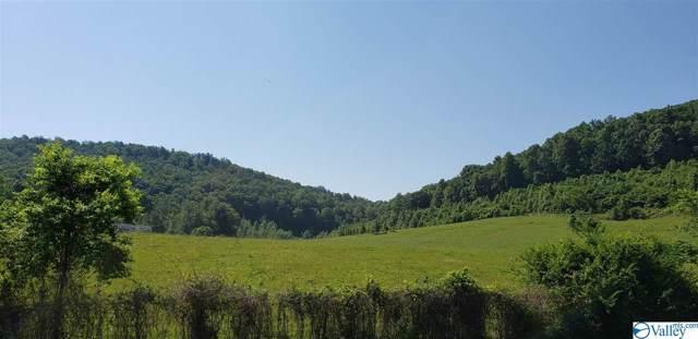 1 County Road 41, Gaylesville, AL 35973 (MLS #1134065) :: Amanda Howard Sotheby's International Realty