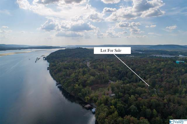Lot 161 & 162 Lookout Mountain Drive, Scottsboro, AL 35769 (MLS #1134504) :: Rebecca Lowrey Group