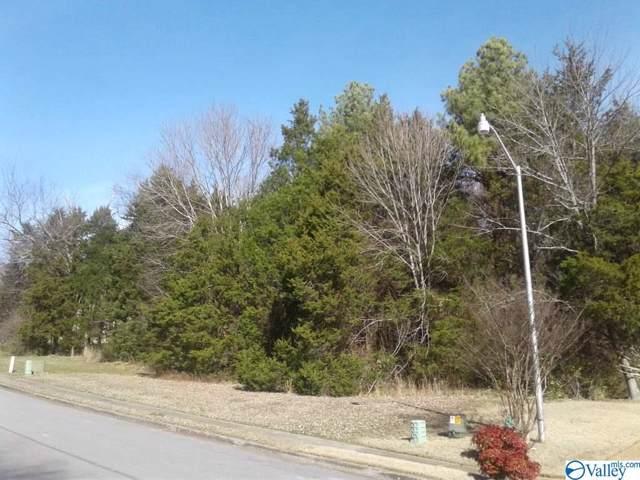 6516 Sparkling Dew Lane, Huntsville, AL 35810 (MLS #1134836) :: Amanda Howard Sotheby's International Realty