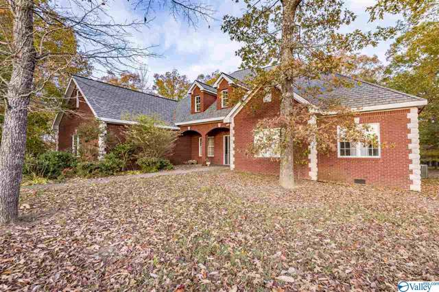 744 County Road 647, Mentone, AL 35984 (MLS #1135009) :: Amanda Howard Sotheby's International Realty