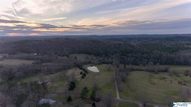 1025 Bryant Road, Ohatchee, AL 36271 (MLS #1135039) :: Weiss Lake Alabama Real Estate
