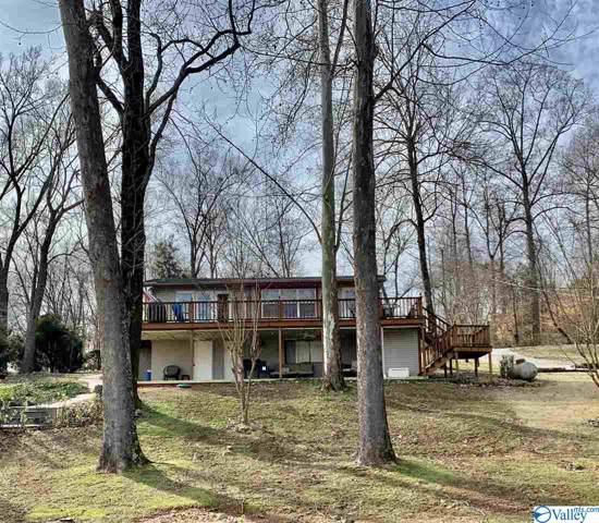 486 Elk River Shores Drive, Rogersville, AL 35652 (MLS #1135110) :: Weiss Lake Alabama Real Estate