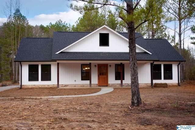 2178 Mountain Gap Road, Blountsville, AL 35031 (MLS #1135165) :: Weiss Lake Alabama Real Estate