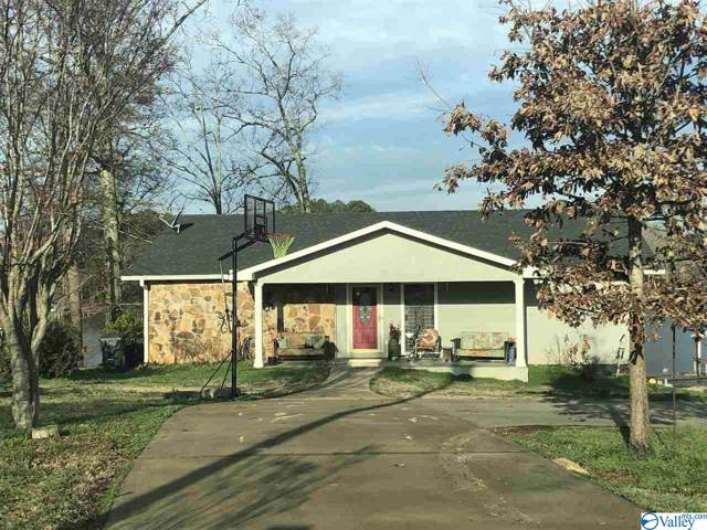 255 Big Nose Drive, Centre, AL 35960 (MLS #1135195) :: Weiss Lake Alabama Real Estate