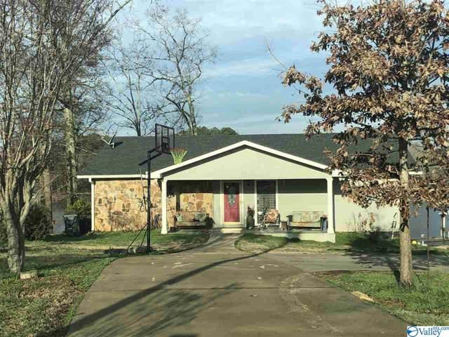 255 Big Nose Drive, Centre, AL 35960 (MLS #1135195) :: Legend Realty