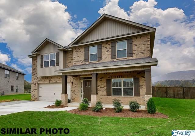 113 Oracle Circle, Huntsville, AL 35811 (MLS #1135306) :: Legend Realty