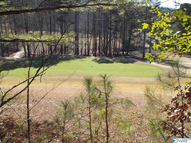 Lots 89/90 Rocky Ridge Road, Union Grove, AL 35175 (MLS #1135508) :: Rebecca Lowrey Group