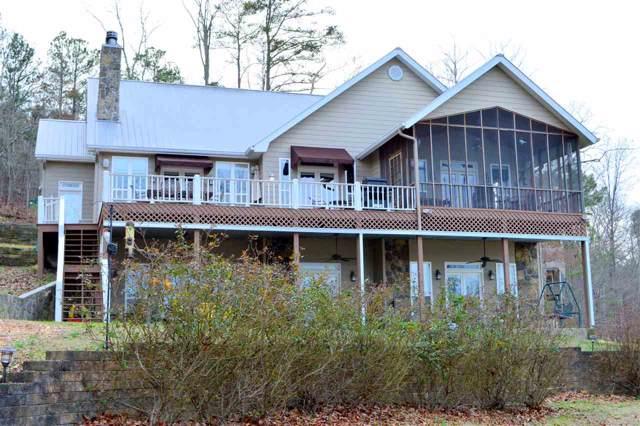 355 County Road 594, Leesburg, AL 35983 (MLS #1135862) :: Amanda Howard Sotheby's International Realty