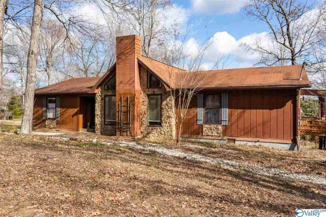 350 County Road 360, Trinity, AL 35673 (MLS #1135897) :: RE/MAX Distinctive | Lowrey Team