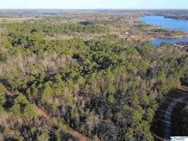 0 County Road 182, Crane Hill, AL 35053 (MLS #1136537) :: Capstone Realty
