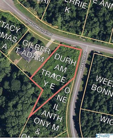387 Redstone Drive, Scottsboro, AL 35768 (MLS #1136648) :: RE/MAX Distinctive | Lowrey Team