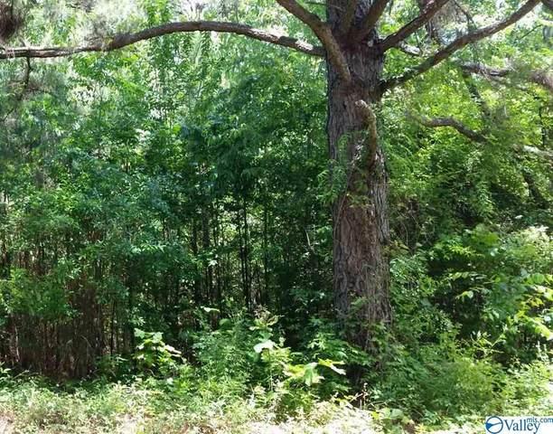 Lot 29 County Road 467, Cedar Bluff, AL 35959 (MLS #1136833) :: RE/MAX Distinctive | Lowrey Team