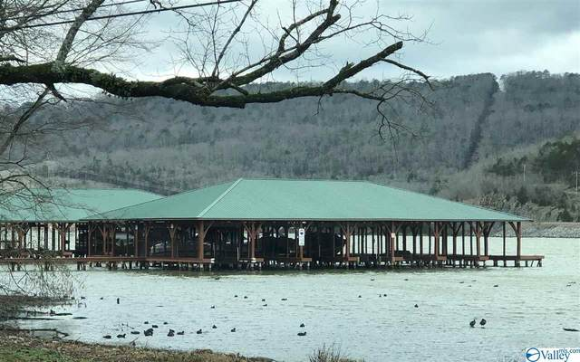 17 Mitchell Hollow Road, Grant, AL 35747 (MLS #1136964) :: Weiss Lake Alabama Real Estate