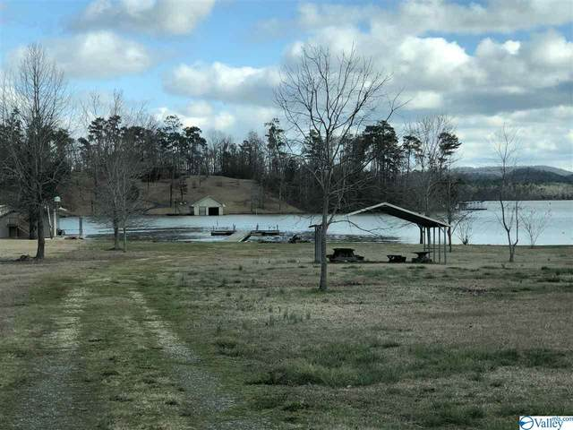 24 Aspen Lane, Scottsboro, AL 35768 (MLS #1136978) :: Amanda Howard Sotheby's International Realty