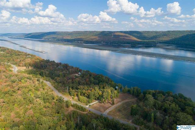 Lot 252 Lookout Mountain Drive, Scottsboro, AL 35769 (MLS #1137123) :: Rebecca Lowrey Group