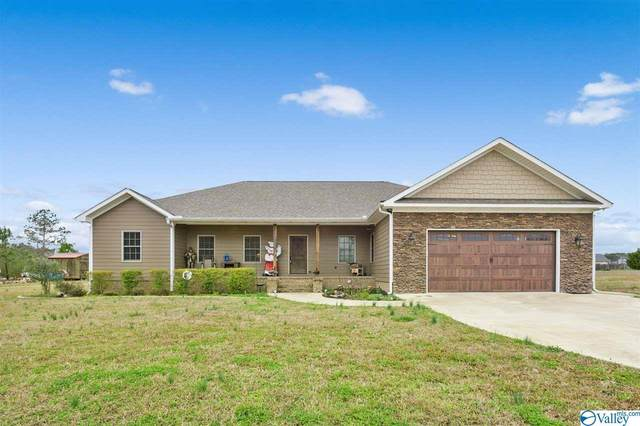 90 Grant Lane, Hokes Bluff, AL 35903 (MLS #1137417) :: Amanda Howard Sotheby's International Realty